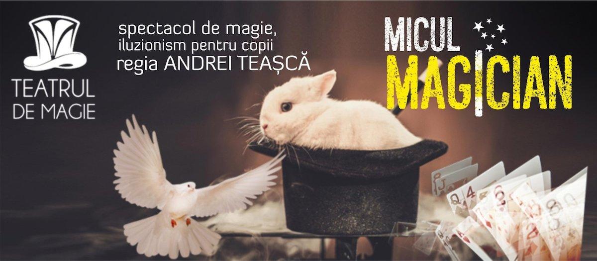 bilete Micul Magician