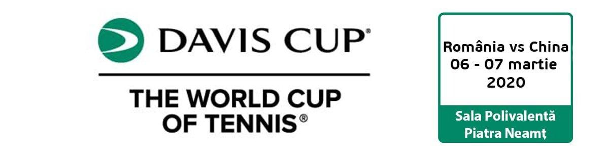 bilete Cupa Davis
