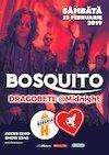 Concert Bosquito ✗ Dragobete
