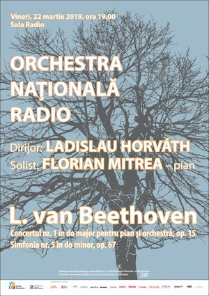 Orchestra Nationala Radio