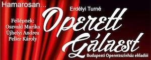 Bilete la  Operett Gálaest a Budapesti Operettszínház előadóival