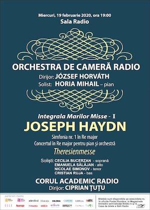 Horia Mihail - Orchestra De Camera Radio - Haydn 100%