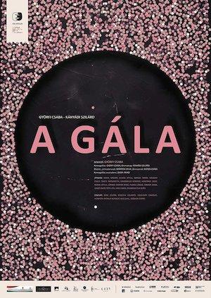 A gala