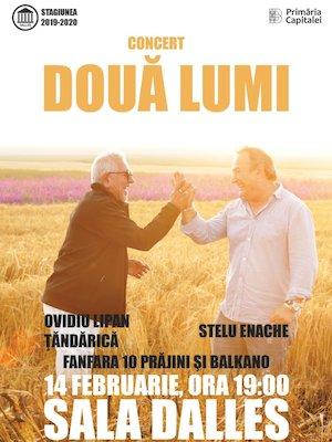 Concert Doua Lumi