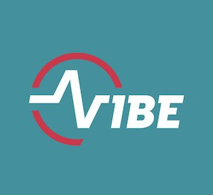 Bilete la  Vibe Festival