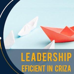 Leadership in situatii de criza - Training Online