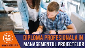 Diploma Profesionala in Managementul Proiectelor