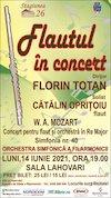 bilete Flautul in concert